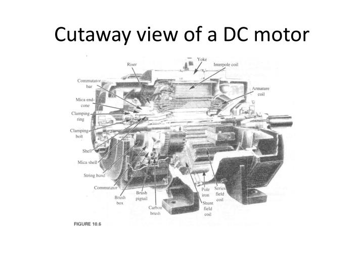Cutaway view of a DC motor