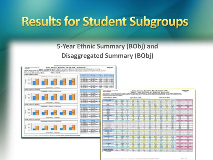 Results for Student Subgroups