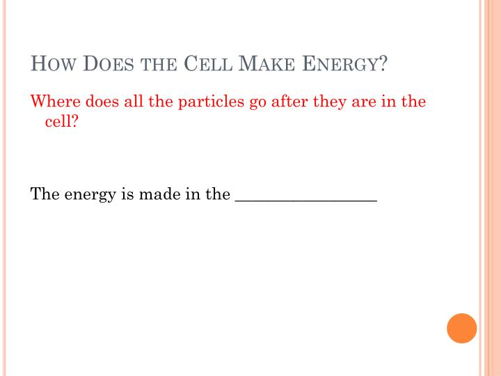 How Does the Cell Make Energy?