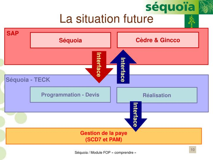 La situation future