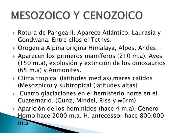 MESOZOICO Y CENOZOICO
