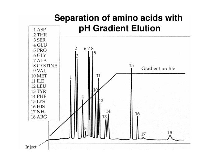 Separation of amino acids with