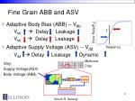 fine grain abb and asv