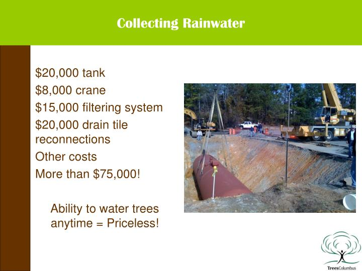 Collecting Rainwater