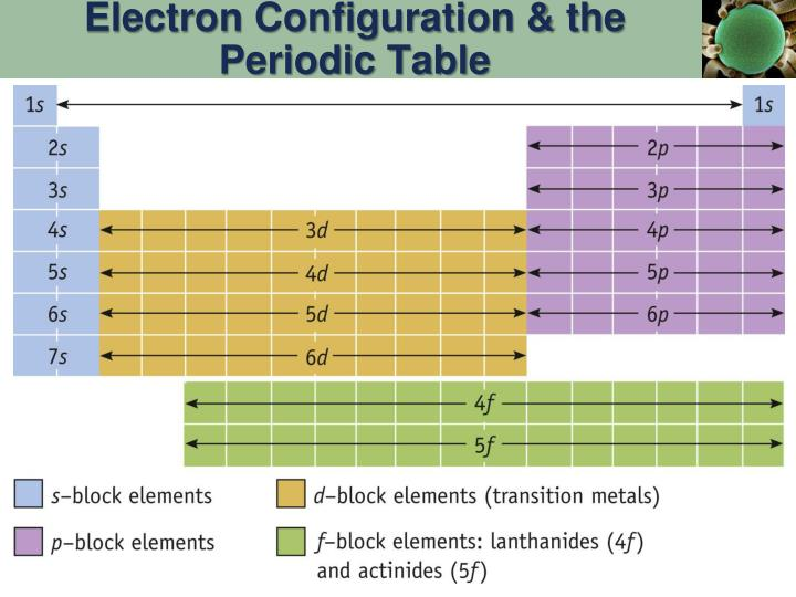 Electron Configuration & the Periodic Table