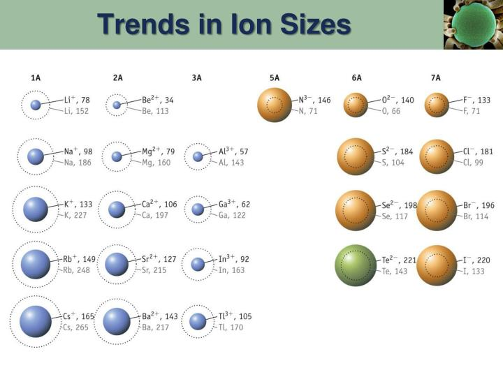 Trends in Ion Sizes