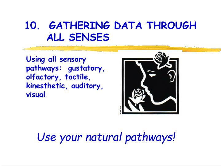 10.  GATHERING DATA THROUGH 		ALL SENSES