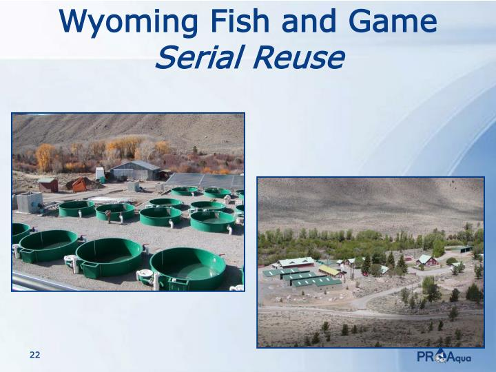 Ppt partial reuse idaho powerpoint presentation id 3151376 for Wyo game fish