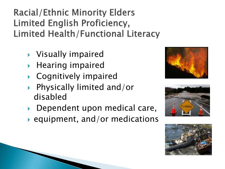 Racial/Ethnic Minority Elders