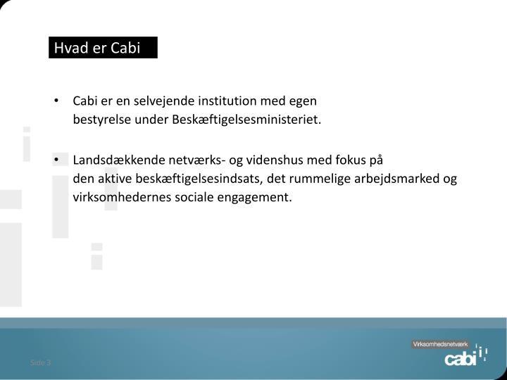 Hvad er Cabi