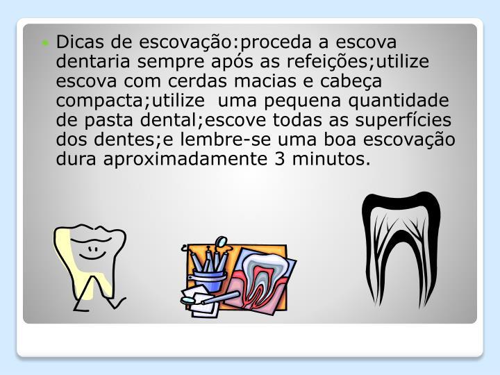 Dicas de escovação:proceda a escova dentaria sempre após as refeições;utilize escova com cerdas macias e cabeça compacta;utilize  uma pequena quantidade de pasta dental;escove todas as superfícies dos dentes;e lembre-se uma boa escovação dura aproximadamente 3 minutos.