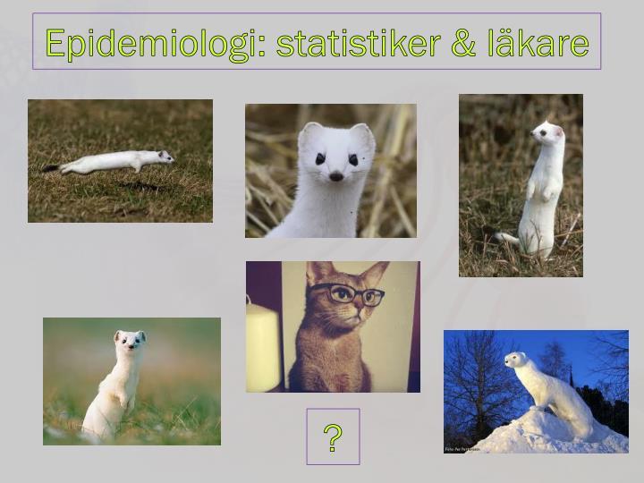Epidemiologi: statistiker & läkare