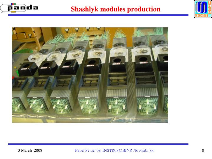 Shashlyk modules production
