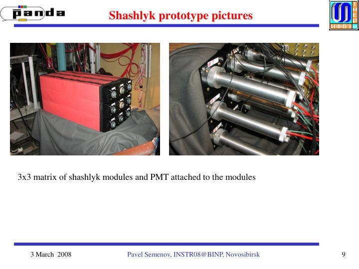 Shashlyk prototype pictures
