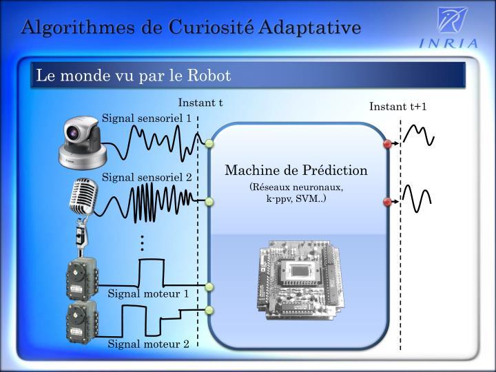 Le monde vu par le Robot