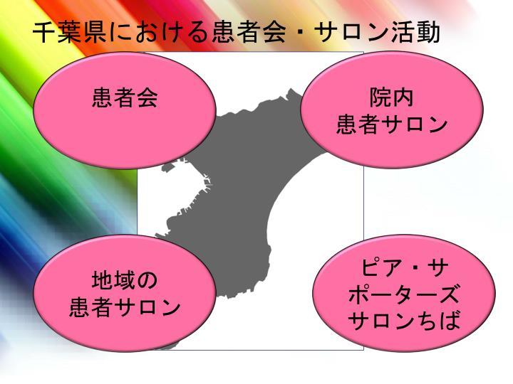 千葉県における患者会・サロン活動