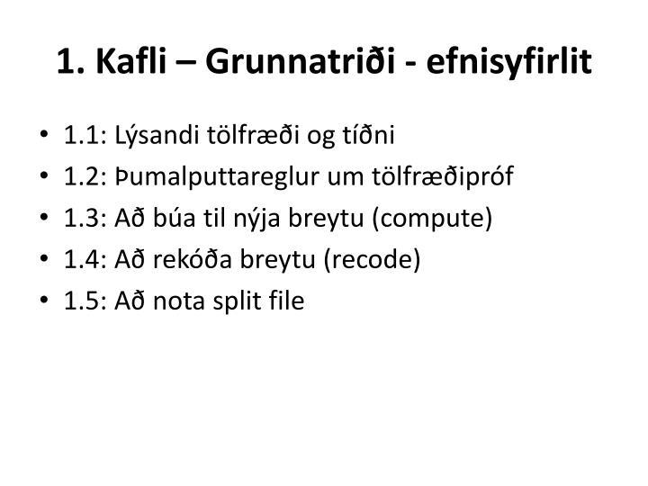 1. Kafli – Grunnatriði - efnisyfirlit