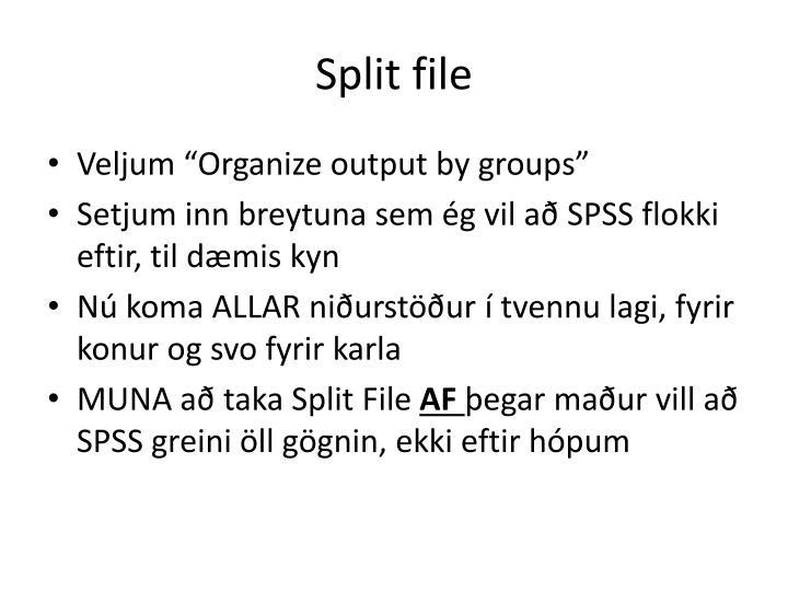 Split file