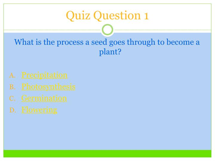 Quiz Question 1