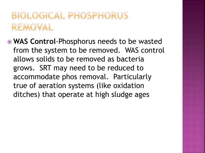 Biological Phosphorus Removal