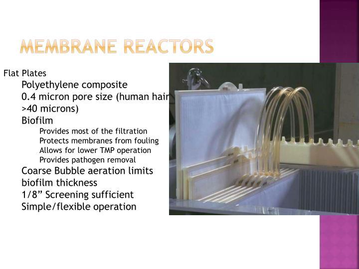Membrane Reactors