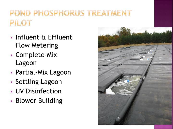 Pond Phosphorus Treatment Pilot