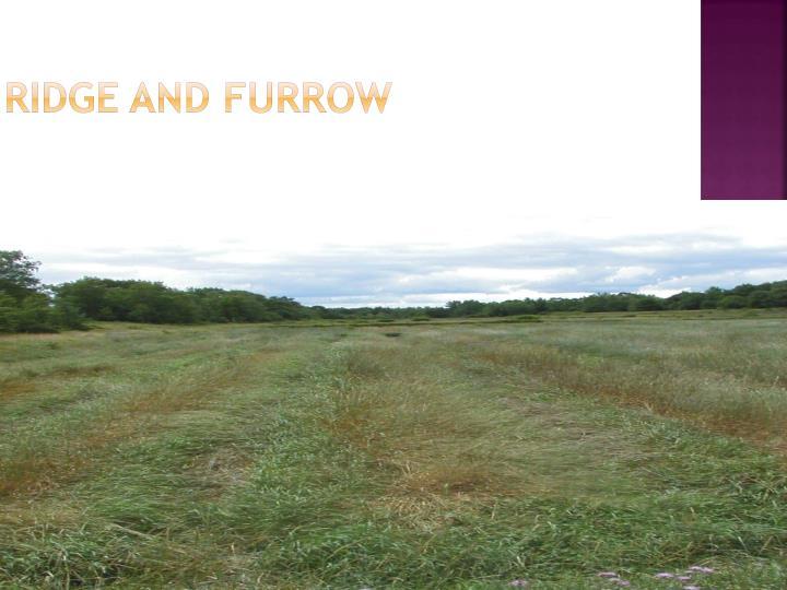 Ridge and Furrow