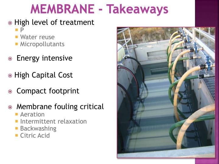 MEMBRANE - Takeaways