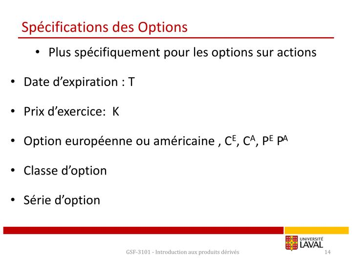 Spécifications des Options