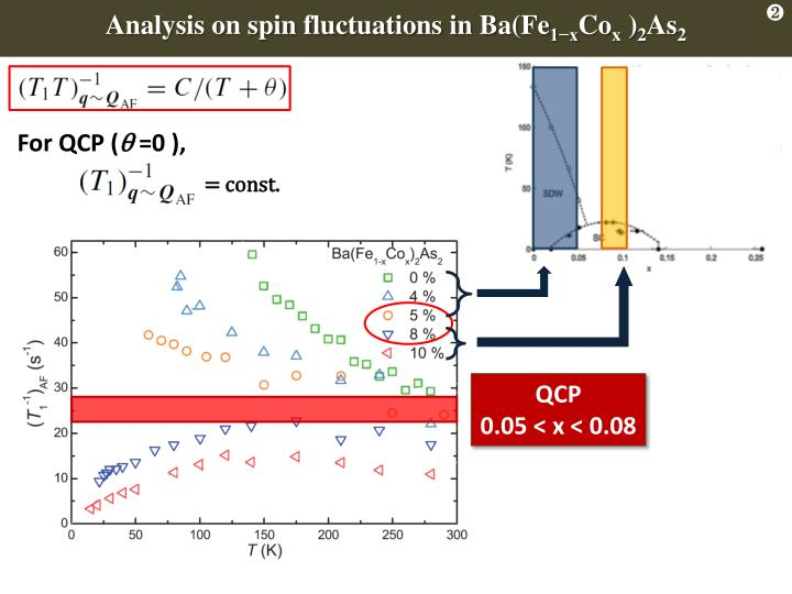 Analysis on spin fluctuations in