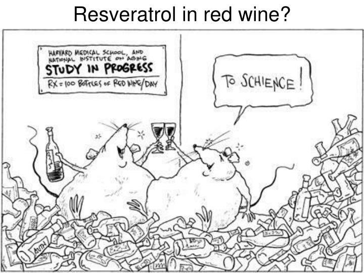 Resveratrol in red wine?