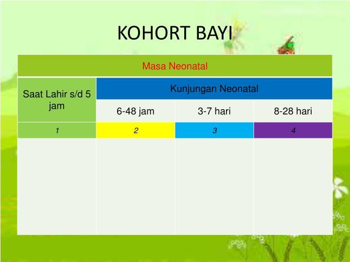 KOHORT BAYI