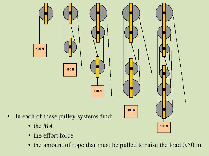 In each of these pulley systems find: