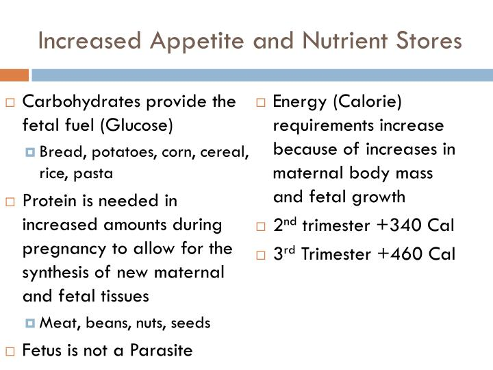 Increased Appetite and Nutrient Stores