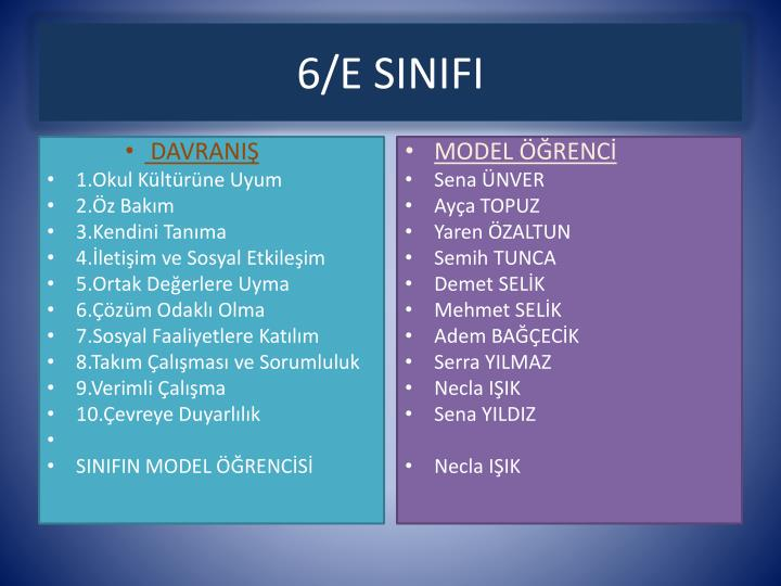 6/E SINIFI