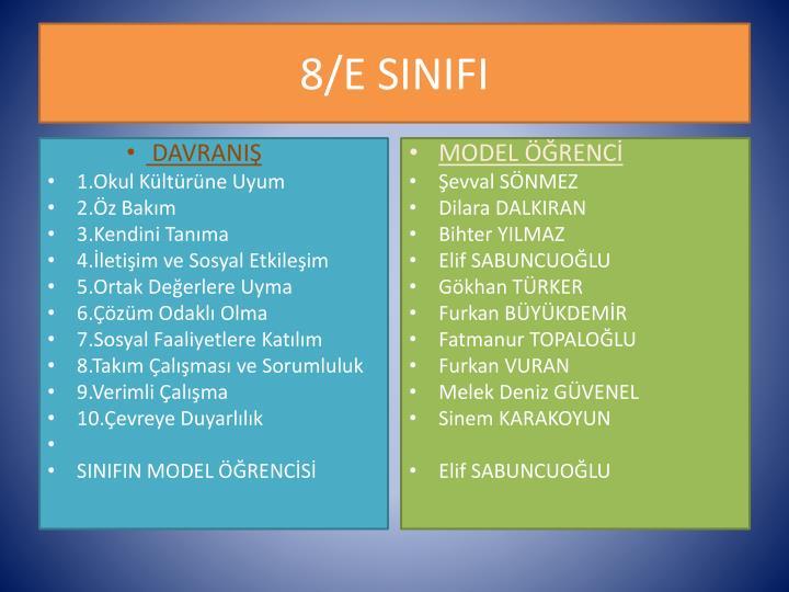 8/E SINIFI