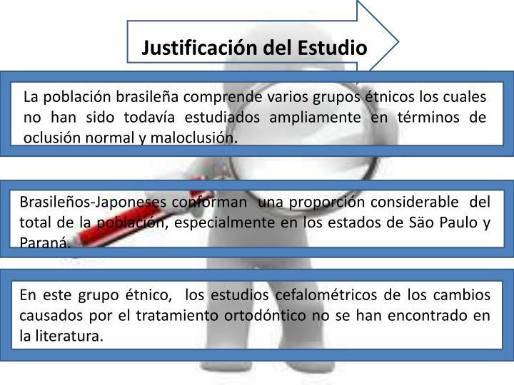 Justificación del Estudio