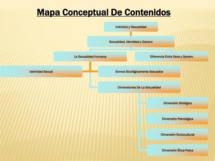 Mapa Conceptual De Contenidos