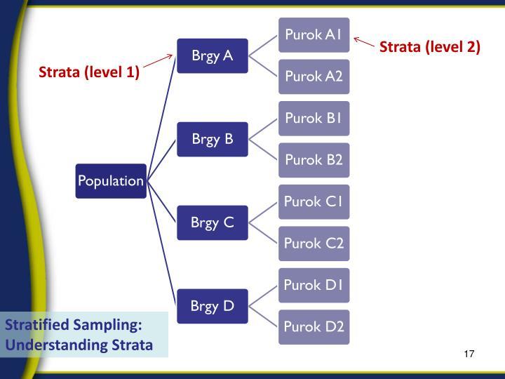 Strata (level 2)