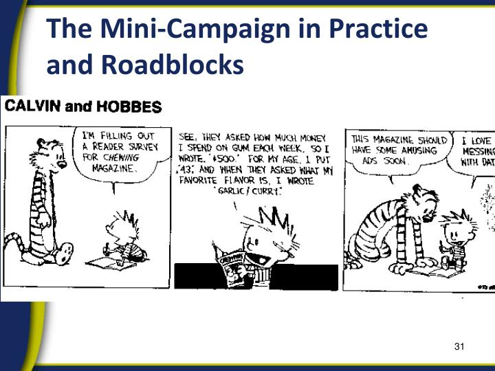 The Mini-Campaign in Practice and Roadblocks