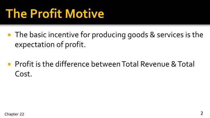 The Profit Motive