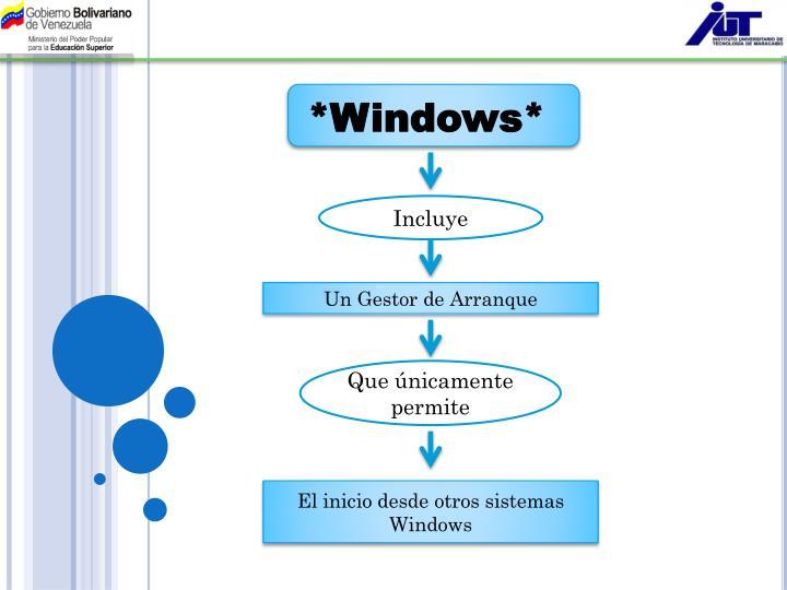 *Windows*