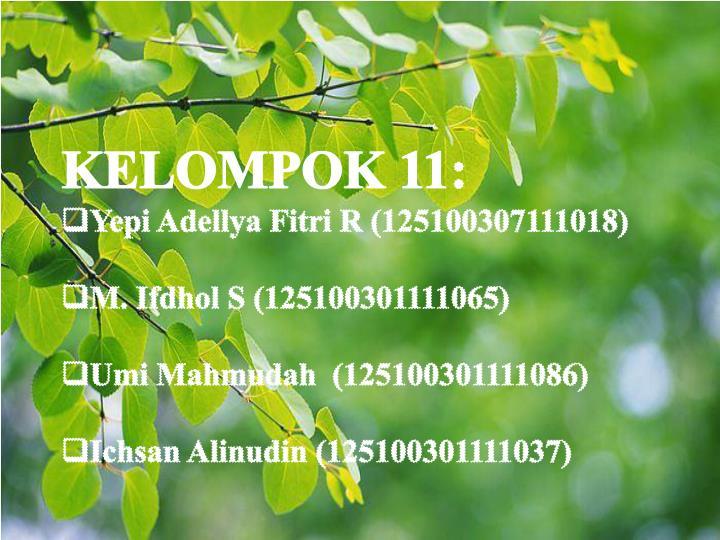 KELOMPOK 11