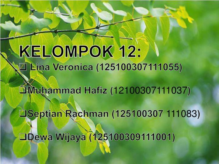 KELOMPOK 12