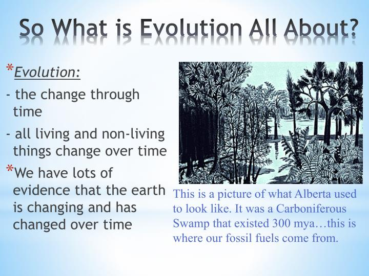 So What is Evolution All About?
