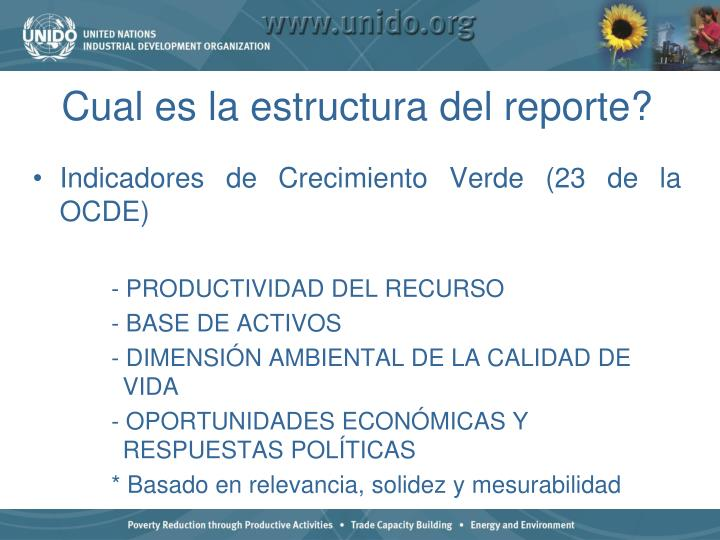 Cual es la estructura del reporte?