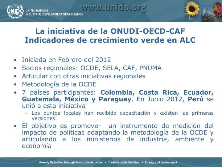 La iniciativa de la ONUDI-OECD-CAF