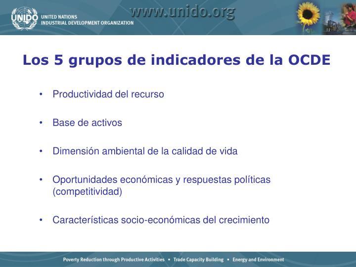 Los 5 grupos de indicadores de la OCDE