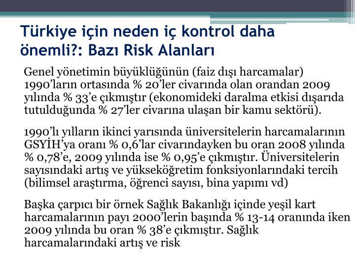 Türkiye için neden iç kontrol daha önemli?: Bazı Risk Alanları