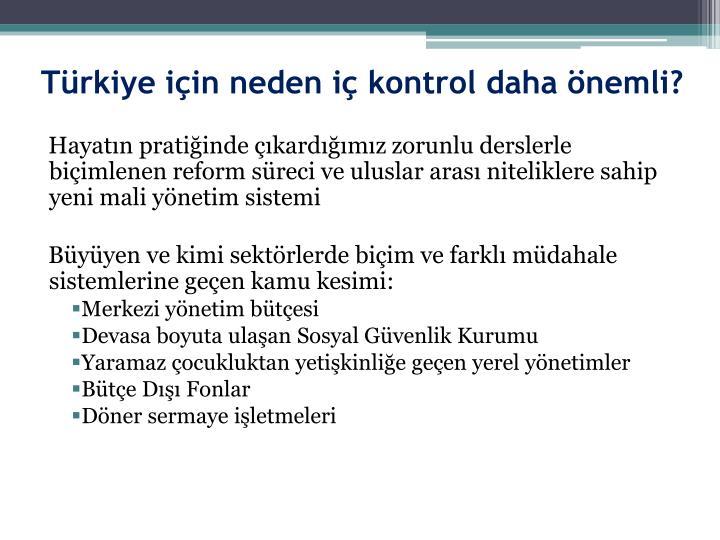 Türkiye için neden iç kontrol daha önemli?